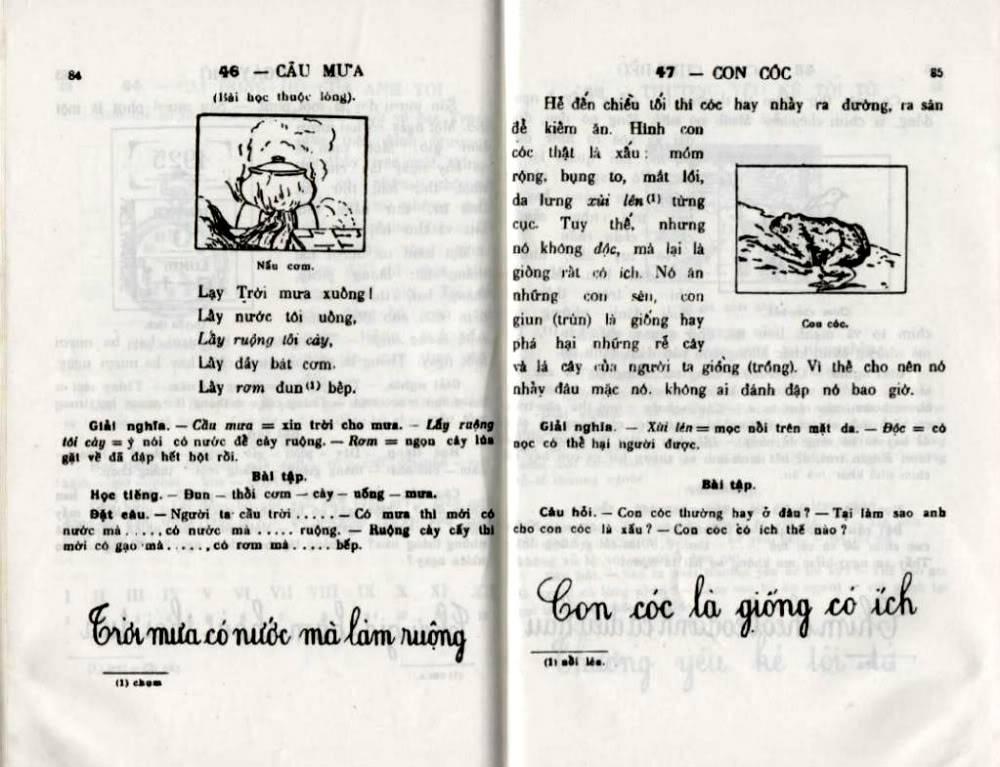 Quốc Văn Giáo Khoa Thư - Page 2 Da-84810