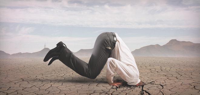 Tại sao đà điểu vùi đầu trong cát mỗi khi gặp nguy hiểm? Dadieu15