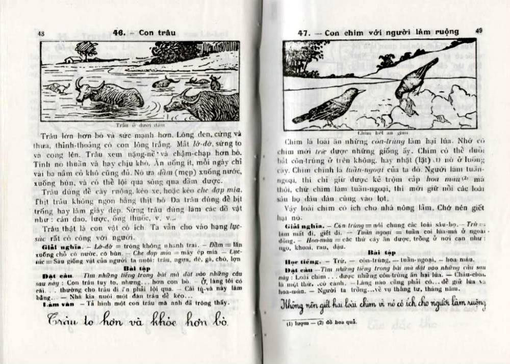 Quốc Văn Giáo Khoa Thư - Page 3 Db-48410