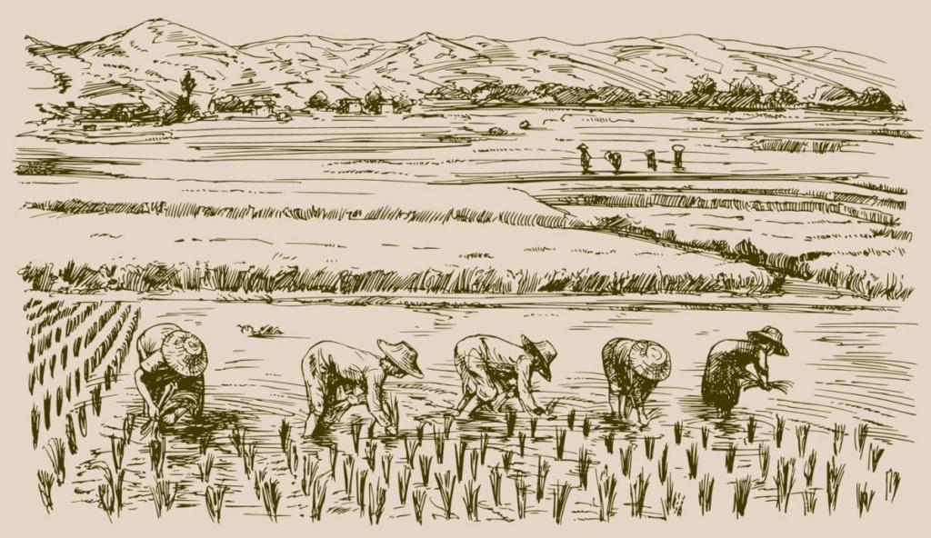 Đôi đũa trong văn hóa Á Đông   Dua1210