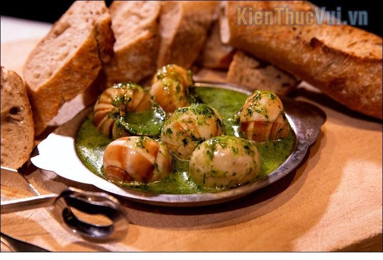 20 Món ăn kinh dị nhất thế giới Escarg10