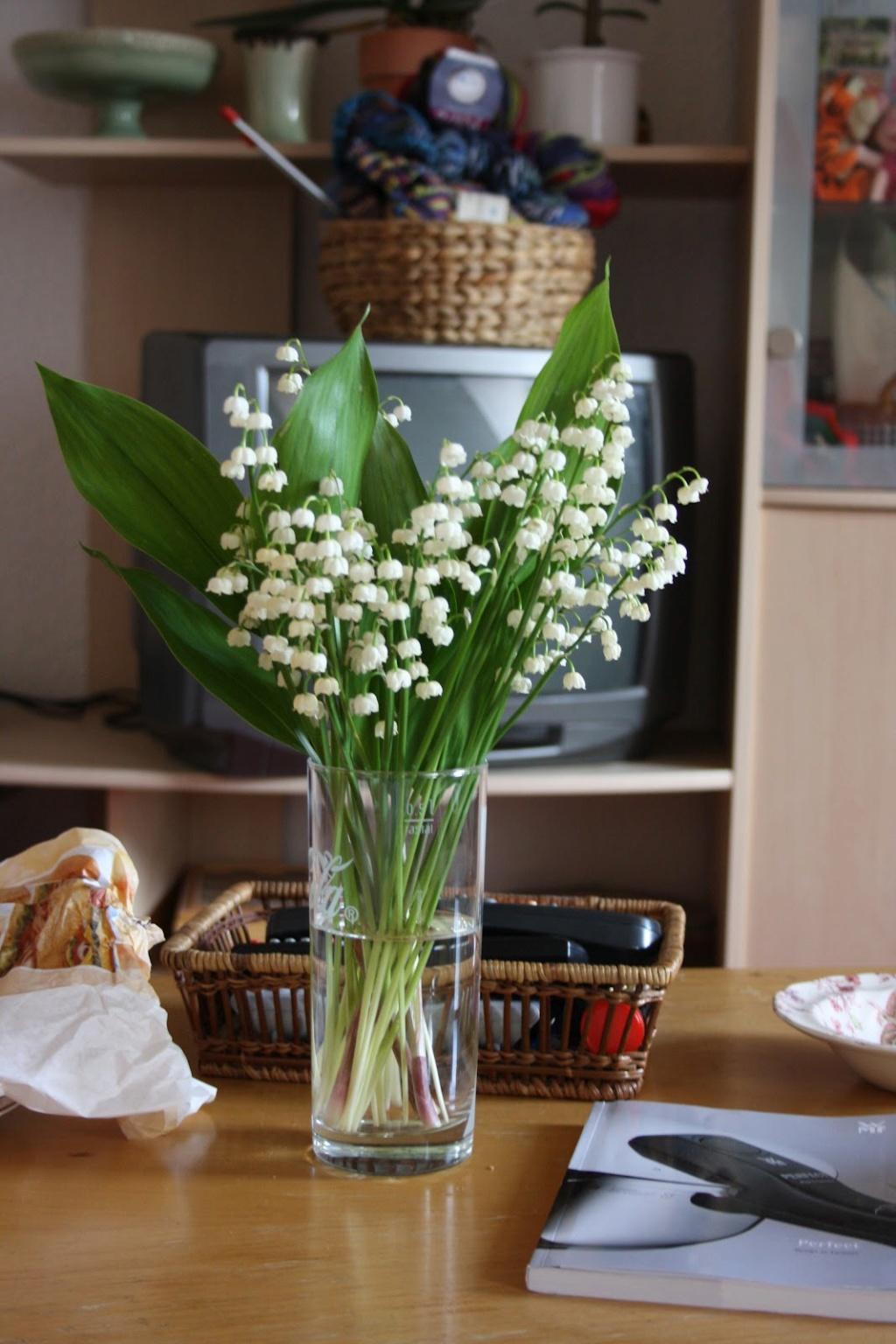Sự tích hoa linh lan Hoa-la14