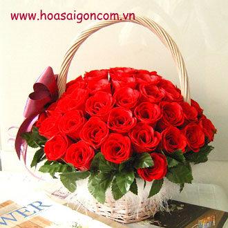Sự tích hoa hồng đỏ Hoa-ti10