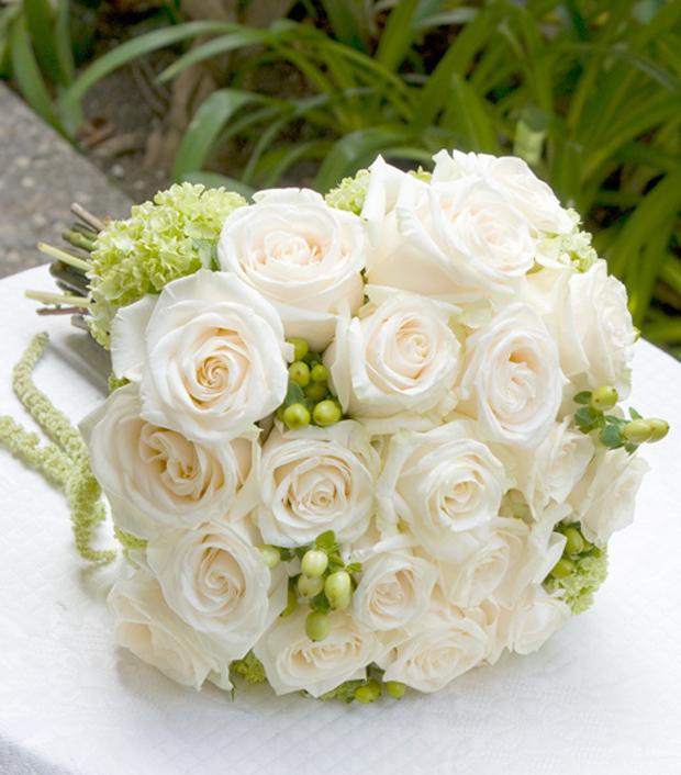 Sự tích hoa hồng trắng Hong-t12