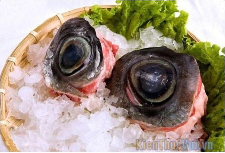 20 Món ăn kinh dị nhất thế giới Mat-ca10