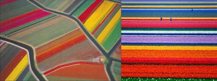 Những điểm đến tràn ngập màu sắc Mau-1110