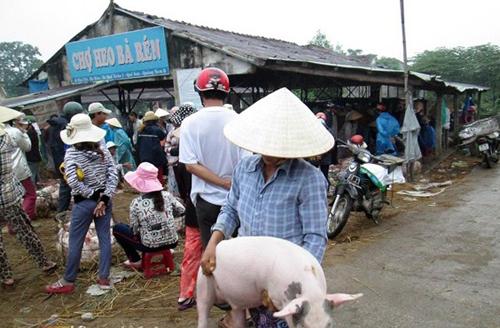 Những nghề mưu sinh độc – lạ, chỉ có ở Việt Nam! Nghe-012