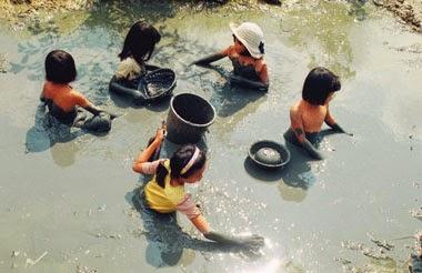 Có phải Việt Nam là nơi tốt nhất để sống? Ngheo310