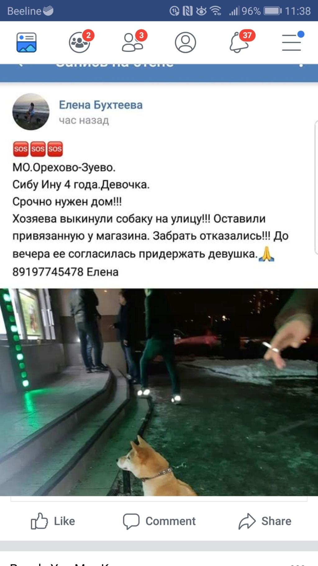 Чья девочка брошена в Орехово-Зуево?  Screen11