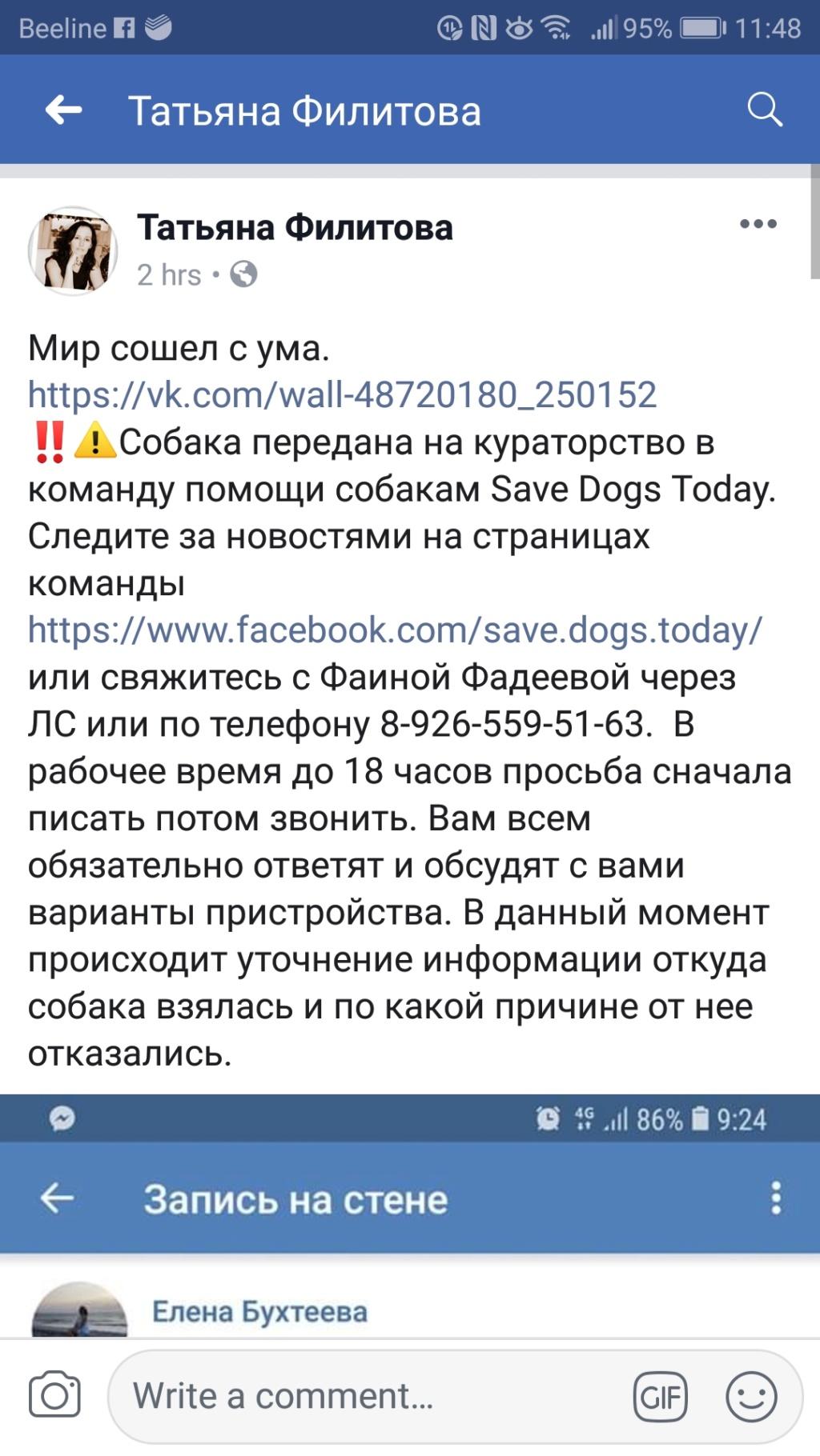 Чья девочка брошена в Орехово-Зуево?  Screen12