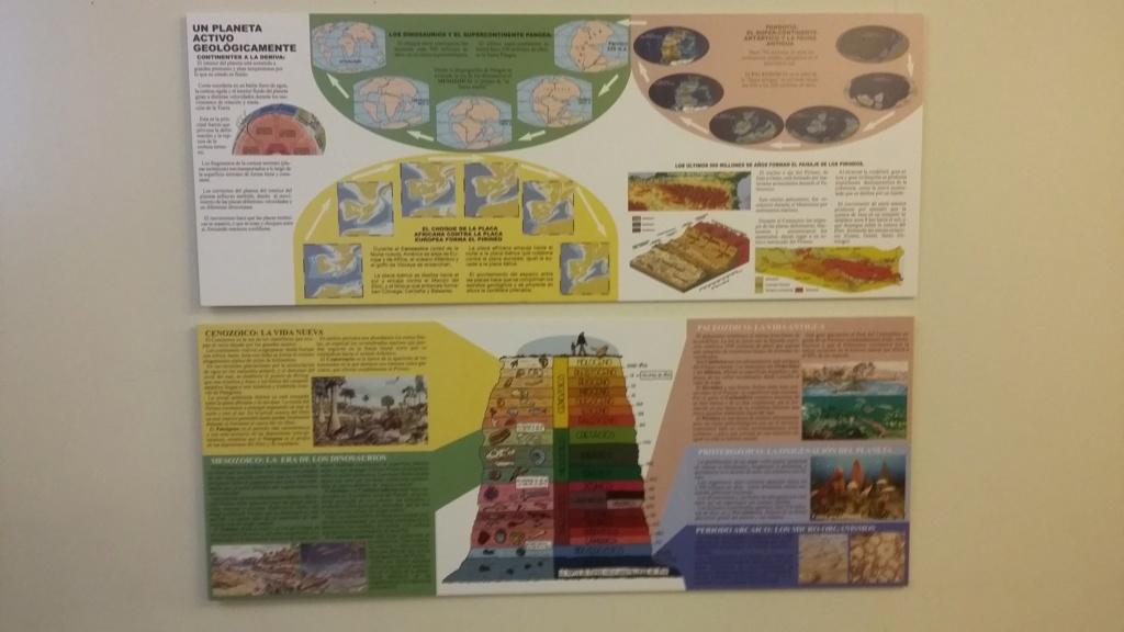 Exposición especies de la transversal pirenaica y algunas cosas más 20181019