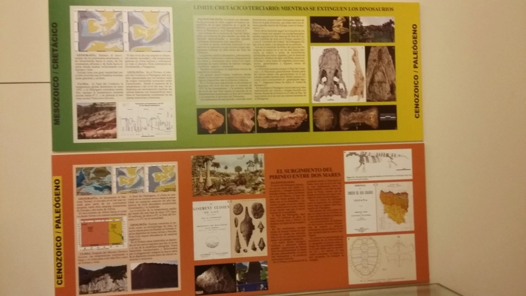 Exposición especies de la transversal pirenaica y algunas cosas más 20181044