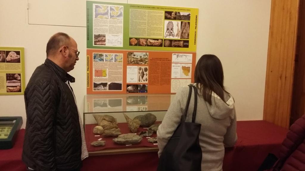 Exposición especies de la transversal pirenaica y algunas cosas más 20181046