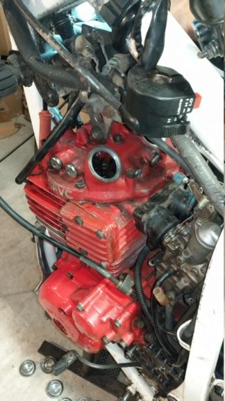 Restauration/préparation Honda XL600LM 1986 Imag1915