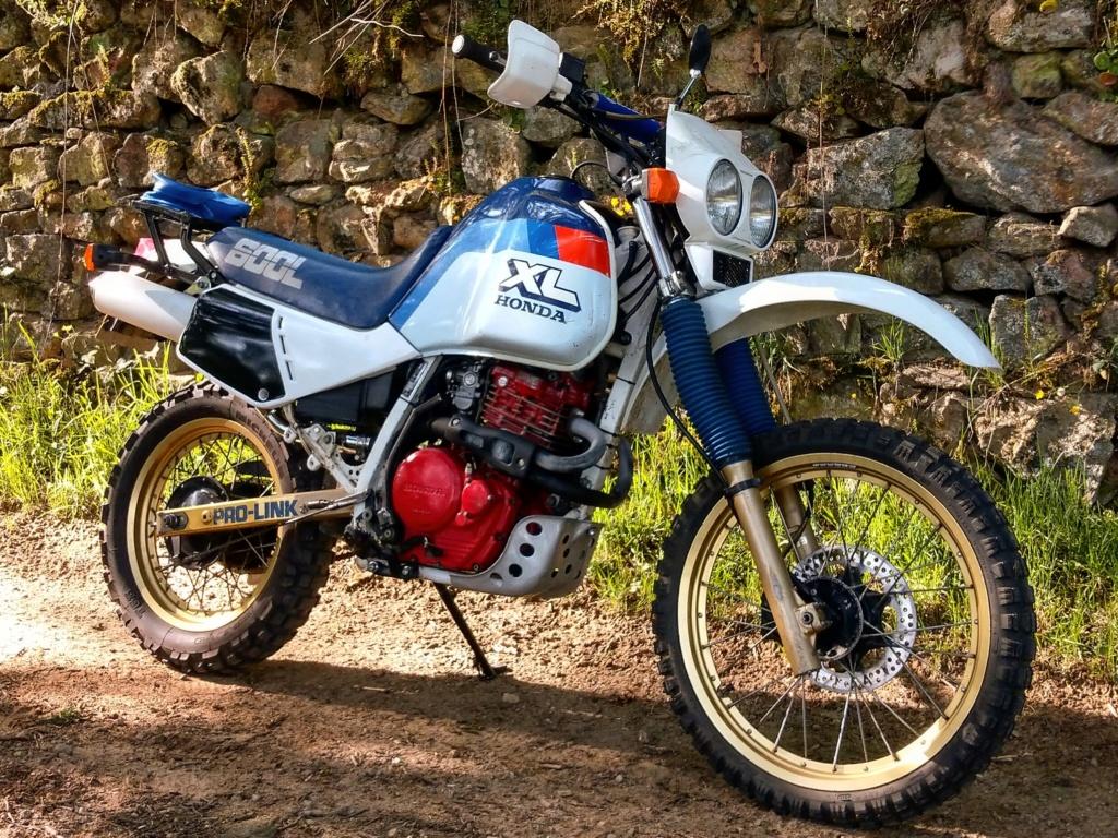 Restauration/préparation Honda XL600LM 1986 - Page 22 Img_2042