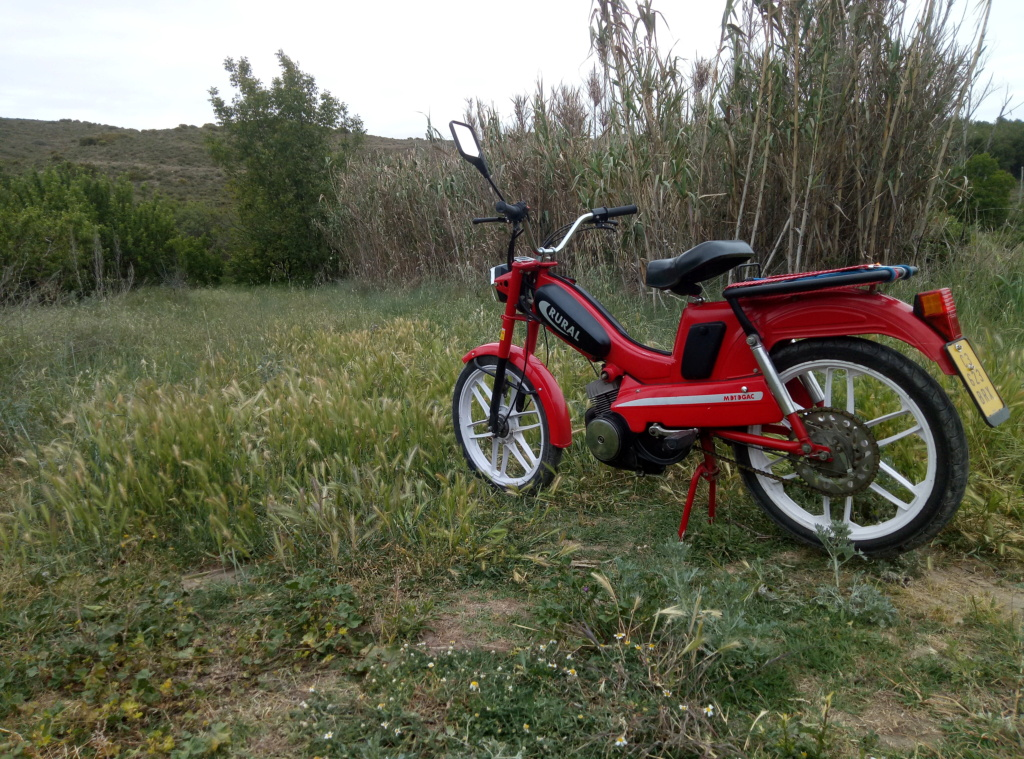 Una rural estupenda P1052310
