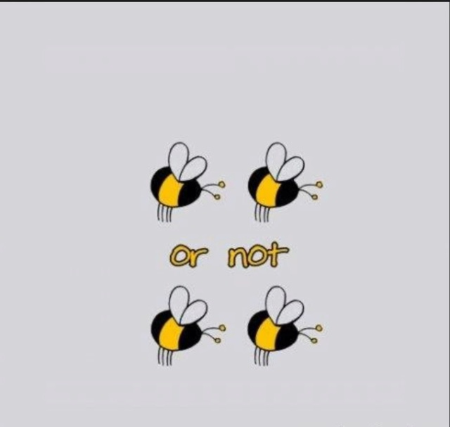 [Jeu] Association d'images - Page 7 Bee10
