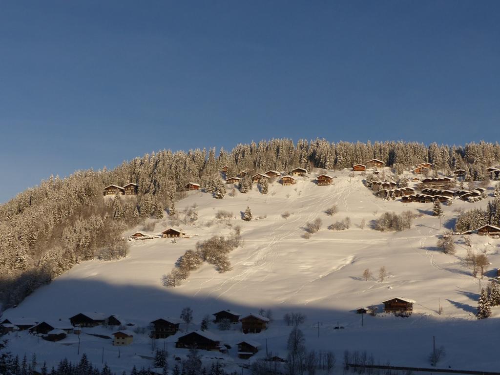 2019/01 - Sortie SnowScoot - 73 Savoie (Espace Diamant). 06_fev48