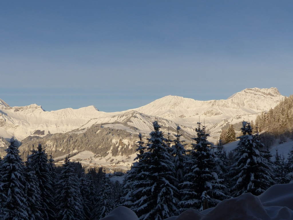 2019/01 - Sortie SnowScoot - 73 Savoie (Espace Diamant). 06_fev49