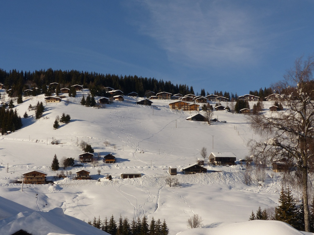 2019/01 - Sortie SnowScoot - 73 Savoie (Espace Diamant). 06_fev52