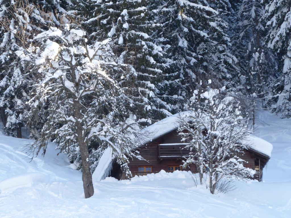 2019/01 - Sortie SnowScoot - 73 Savoie (Espace Diamant). 06_fev56