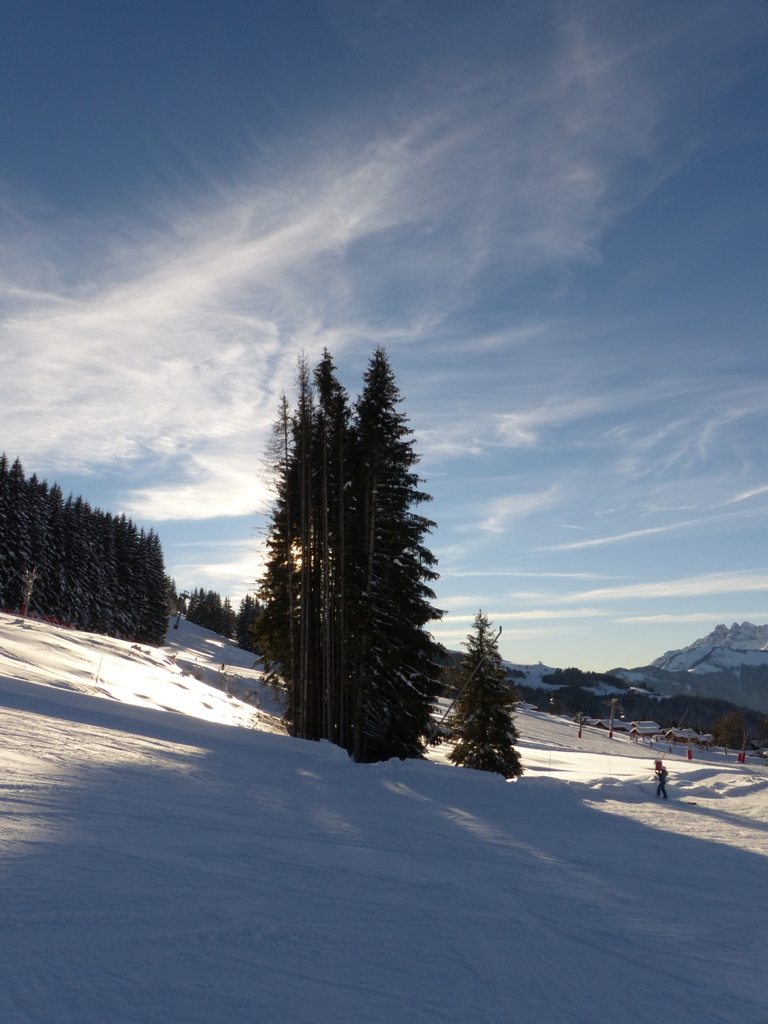 2019/01 - Sortie SnowScoot - 73 Savoie (Espace Diamant). 06_fev61