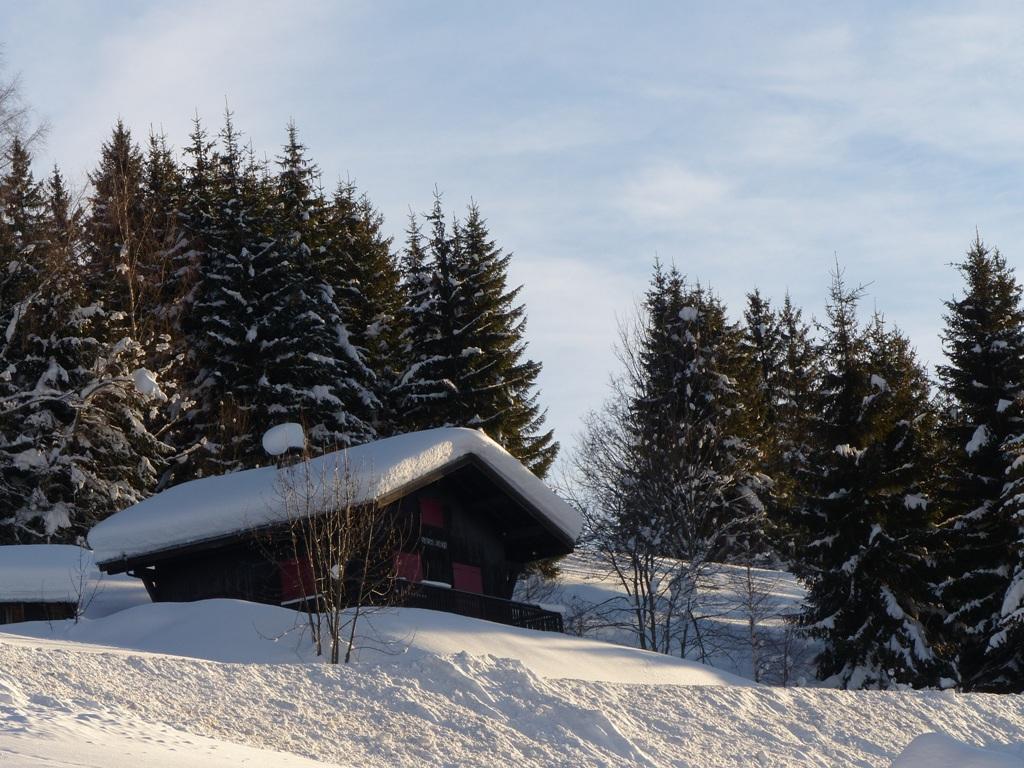2019/01 - Sortie SnowScoot - 73 Savoie (Espace Diamant). 06_fev69