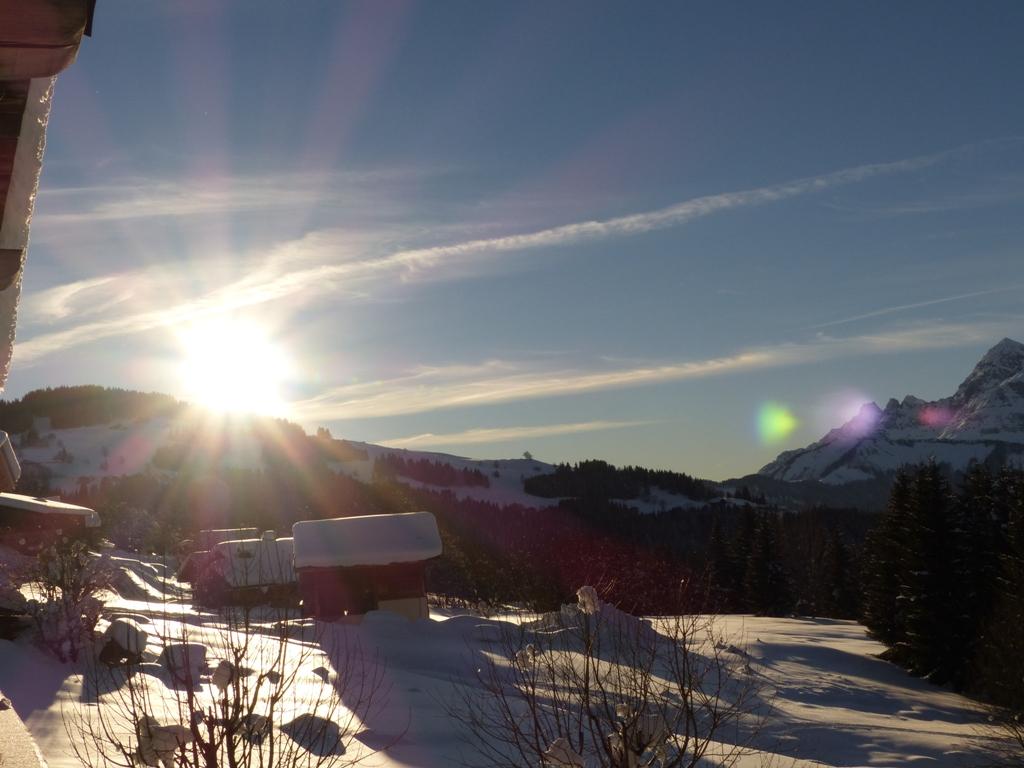 2019/01 - Sortie SnowScoot - 73 Savoie (Espace Diamant). 06_fev71