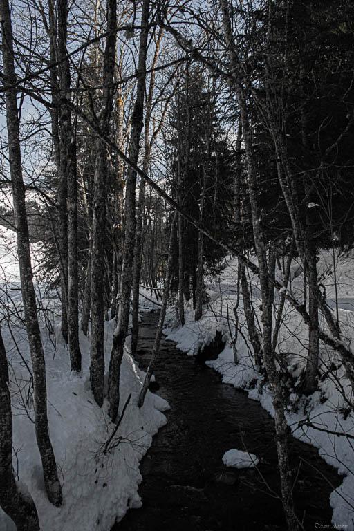 2020/01 - Compte-rendu Entrainement SnowScoot - Savoie (73). Paysag14