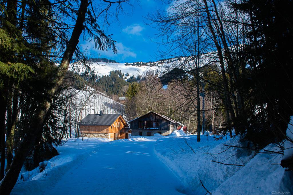 2020/01 - Compte-rendu Entrainement SnowScoot - Savoie (73). Paysag15
