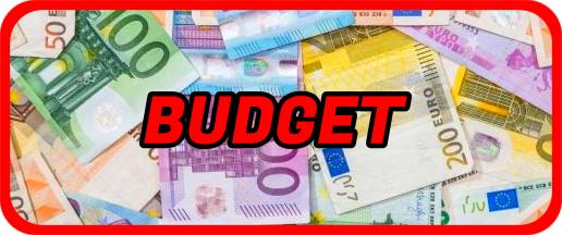 Demande Safet Susic - Page 2 Budget10
