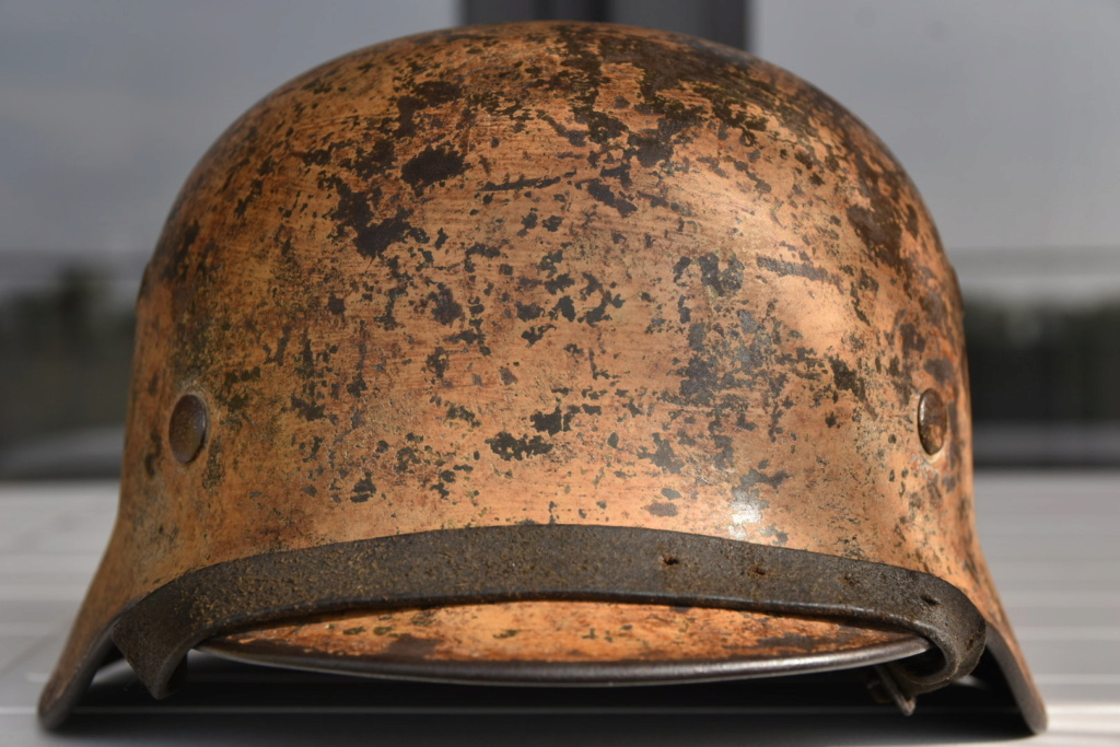 Afrika Korps ou Südfront? 50306510