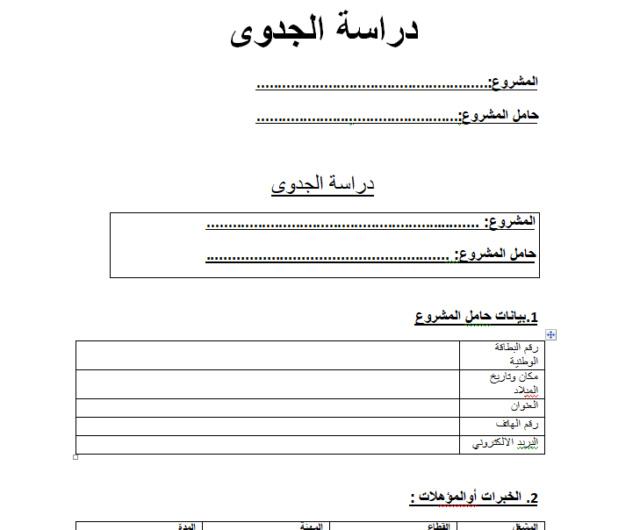 نموذج دراسة جدوى مشروع انطلاقة المغرب باللغة العربية Business plan en Arab Busine10