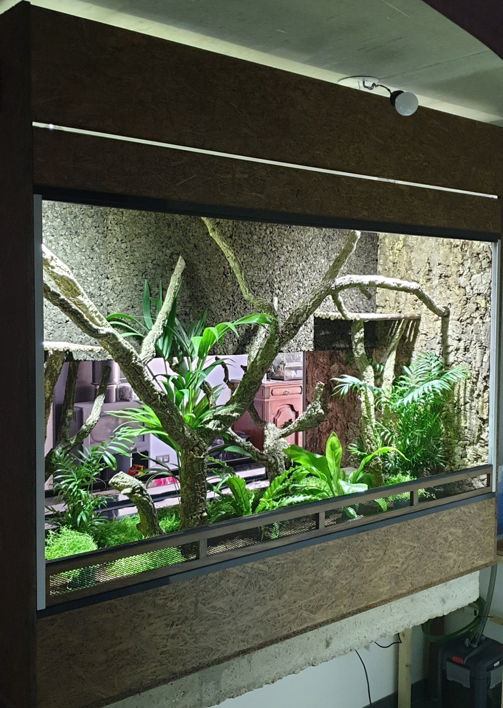Construction Terrarium tropical humide 20200512