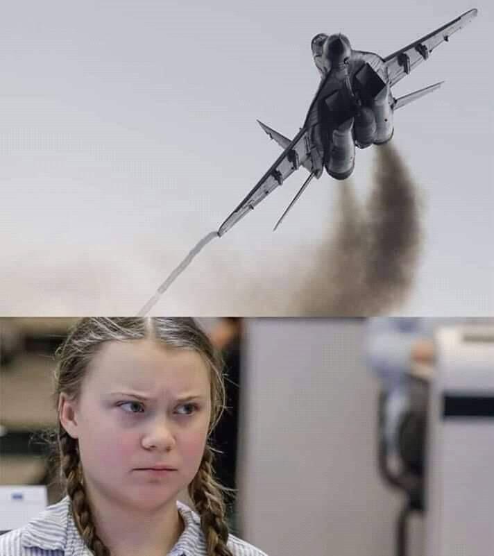 Greta et l'aviation... 3d355210