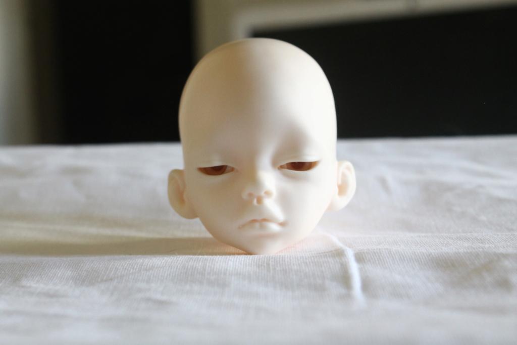 [Dollzone Feilian] Beth [DIM Larina half closed] Img_1013