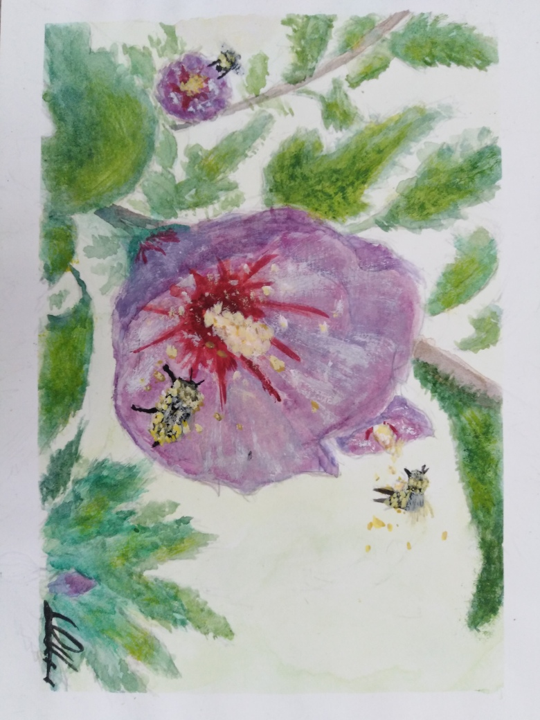 Les Dessins du Quinquin Fleurs10