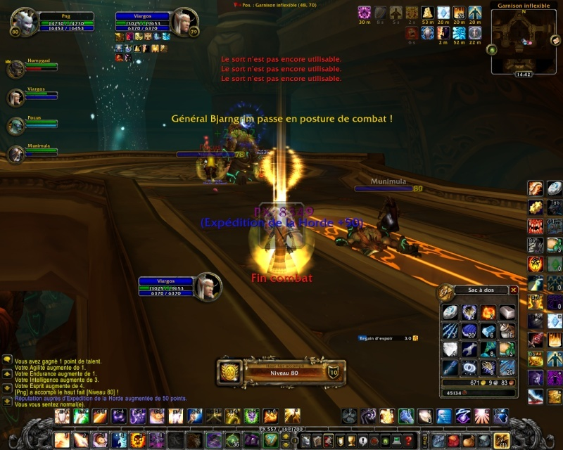 World Of Warcraft - Page 9 Wow_2010