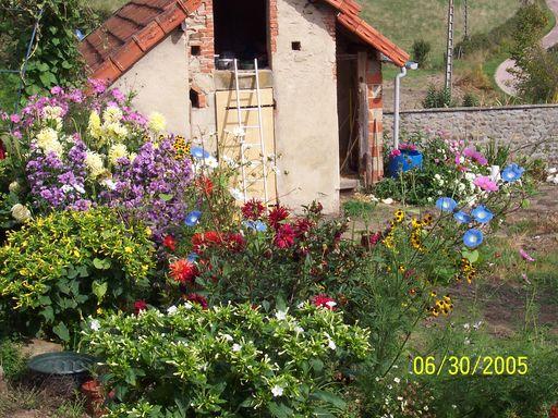 les associations dans le jardin Fleurs19