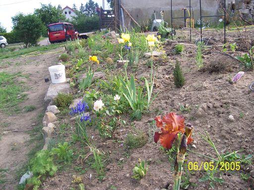 les associations dans le jardin Nottoy10