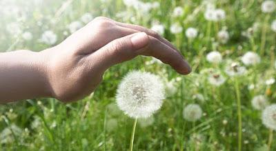 « La Paix sera chacun de nous » ! 18041812