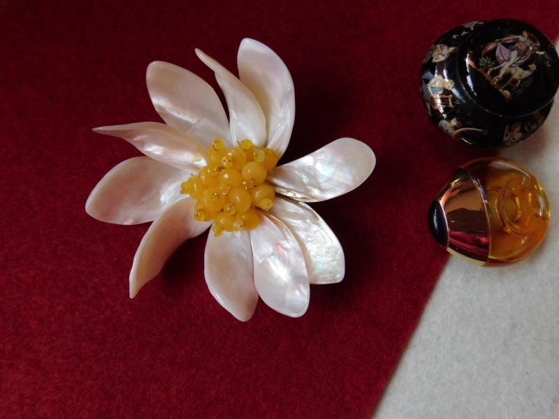 """""""Flori de piatră-Bijoux"""" albumul II-bijuterii artizanale marca Didina Sava Dscn3014"""