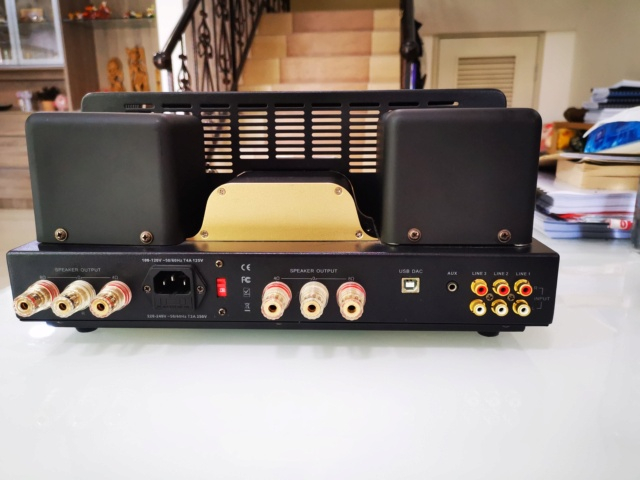 Dared Saturn Single Ended KT88 tube amp (Used) SOLD Img_2290