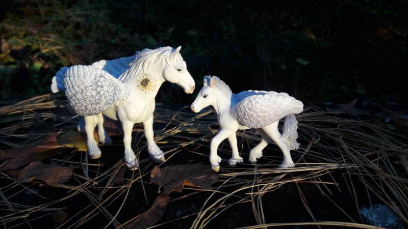 SCHLEICH : mes chevaux, mes dragons et autres figurines 20181135