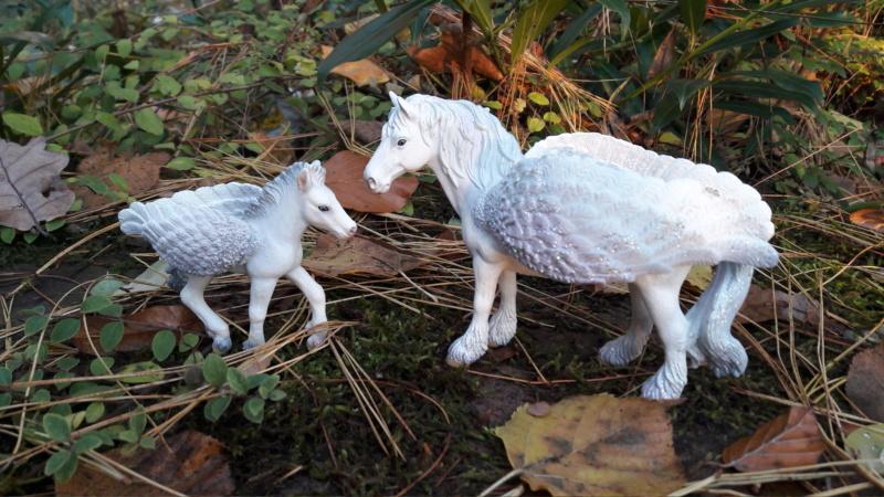SCHLEICH : mes chevaux, mes dragons et autres figurines 20181136