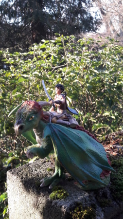 SCHLEICH : mes chevaux, mes dragons et autres figurines 20181289