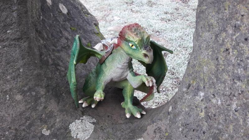SCHLEICH : mes chevaux, mes dragons et autres figurines 20181291