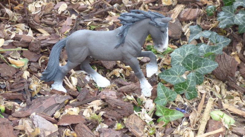 SCHLEICH : mes chevaux, mes dragons et autres figurines P1250614