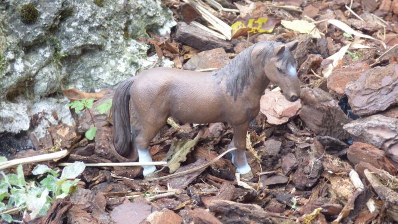 SCHLEICH : mes chevaux, mes dragons et autres figurines P1250615
