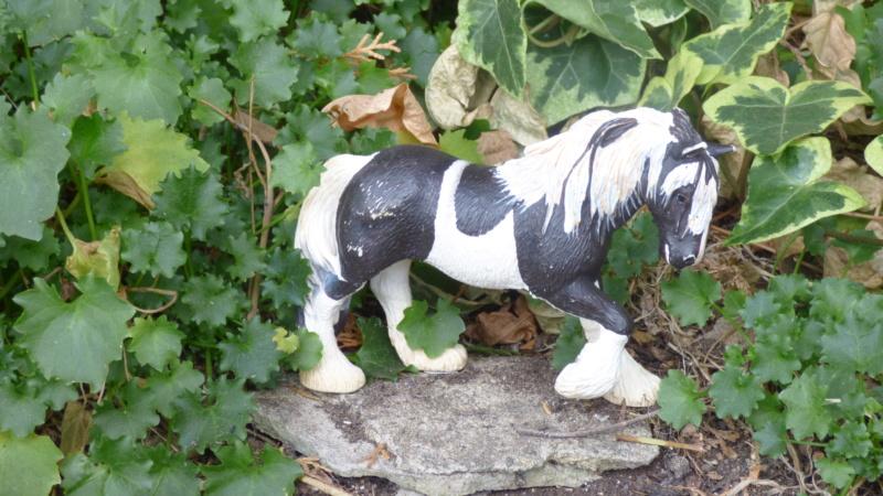 SCHLEICH : mes chevaux, mes dragons et autres figurines P1250617